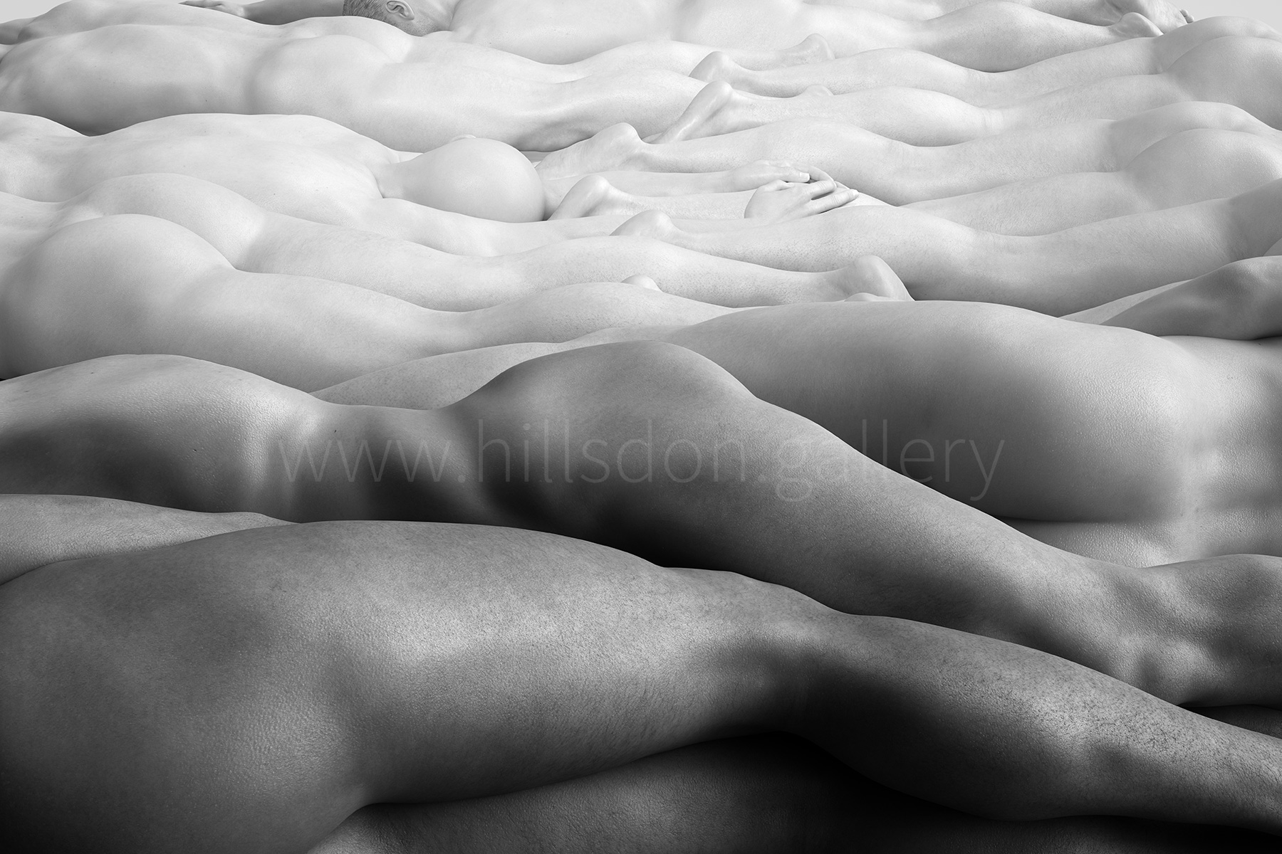 Dudescape in White by Mark Hillsdon